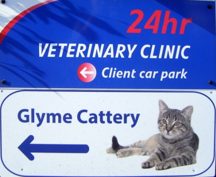 Glyme Cattery sign